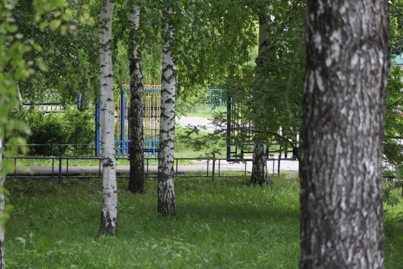 территория реб центра вершина саранск
